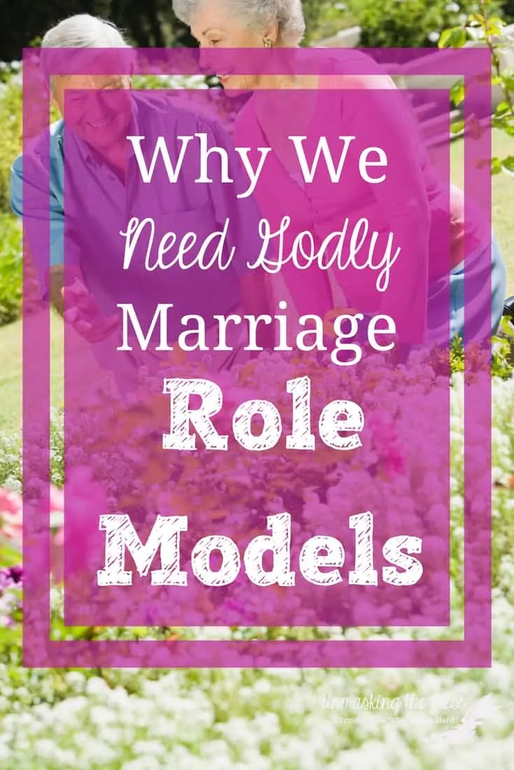 Why We Need Godly Marriage Mentors. What is a mentor? Godly marriage mentors can show you how a marriage should look the way God intended it to be. Society's marriage view is wrong! #Christian #mentors #advice #Problems #long-term