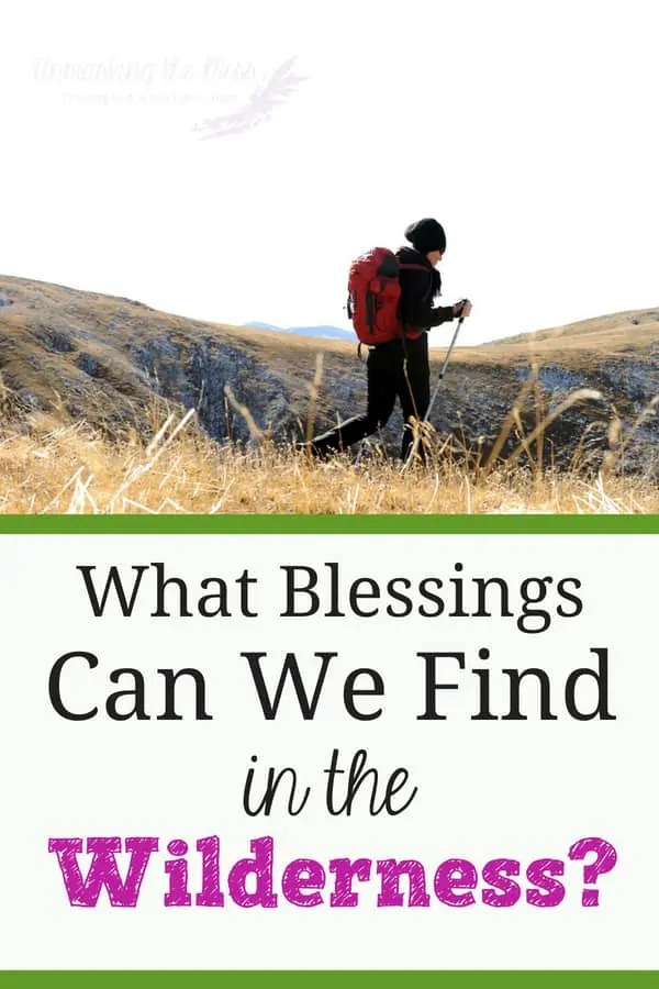 Wilderness Blessings. God has some blessings in store for us. We will never receive them until we get out of our comfort zone. If we break free, its the start of something new! #blessingsfromGod #life #thankful #beyondmeasure