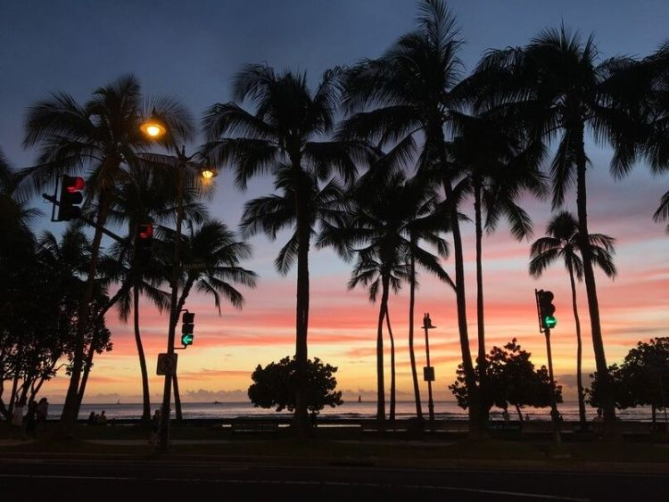 work and travel en hawaii
