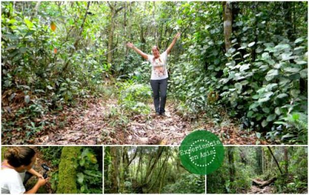 malasia blog de viajes