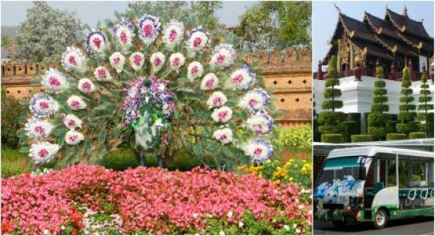 royal flora rajapruek