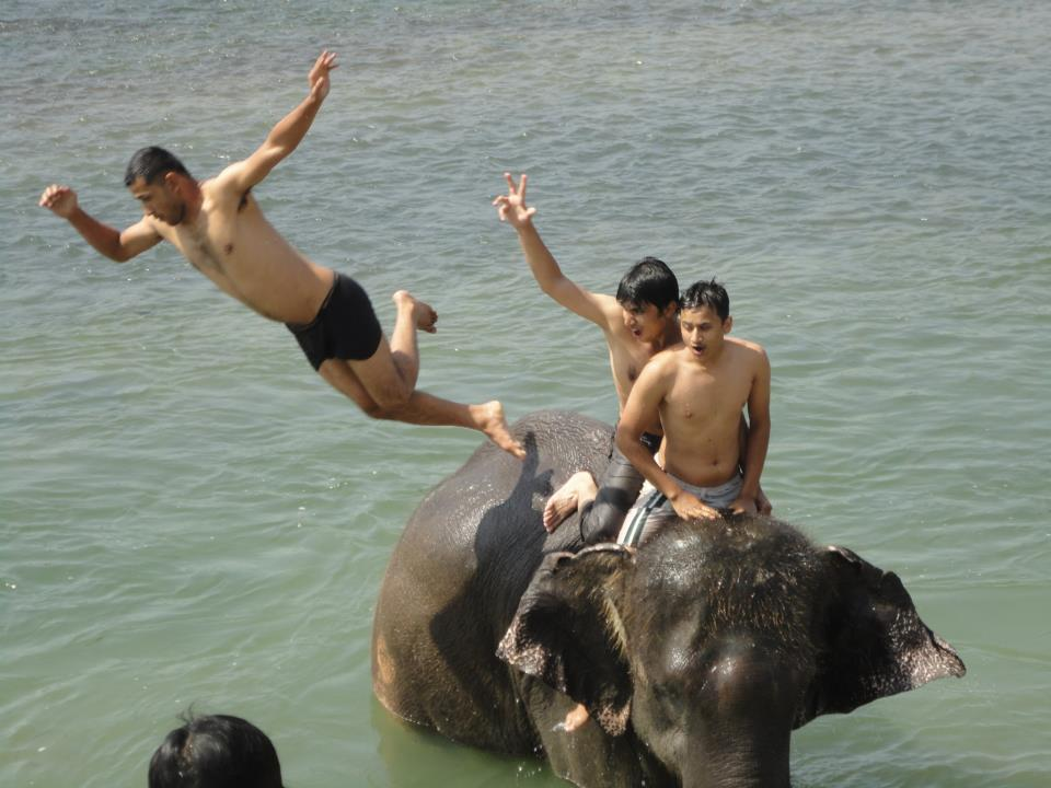 Places To Visit In Chitwan