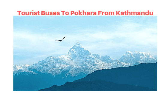 Contact Details Of Tourist Buses To Pokhara From Kathmandu