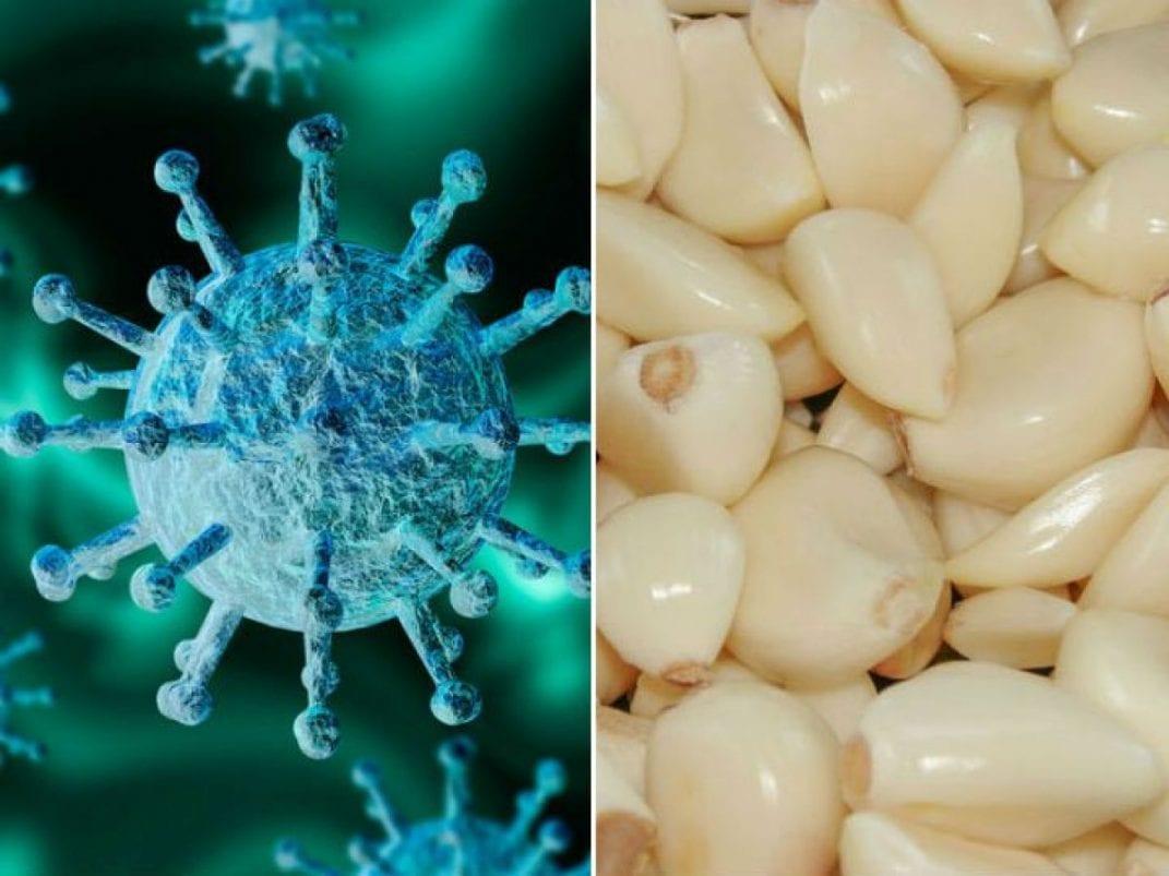 5 alimentos para fortalecer tus defensas y combatir el CORONAVIRUS