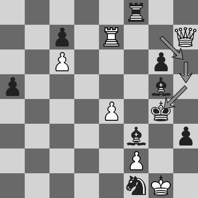 ider-hou-yifan-dopo-48-rg4