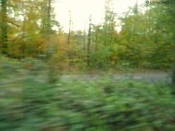 In the tram 44