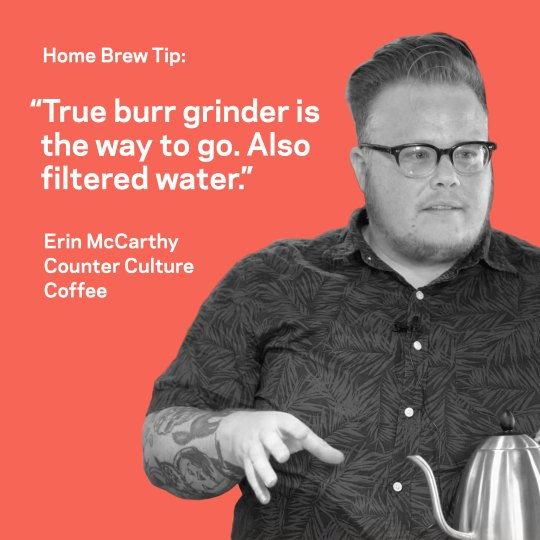 Erin McCarthy home brew tip