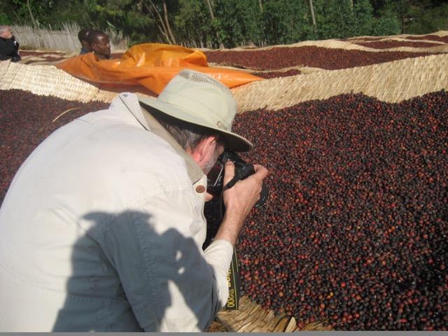 George Howell photographing raise bed coffee cherries Ethiopia Yirgacheffe November 2006 / Photo courtesy Andrew Barnett