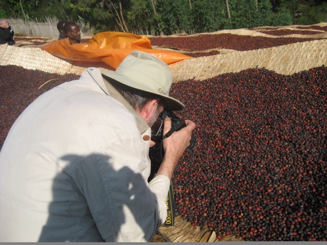 George Howell photographing raise bed coffee cherries Ethiopia Yirgacheffe November 2006 / Photo courtesy Andrew Barnett