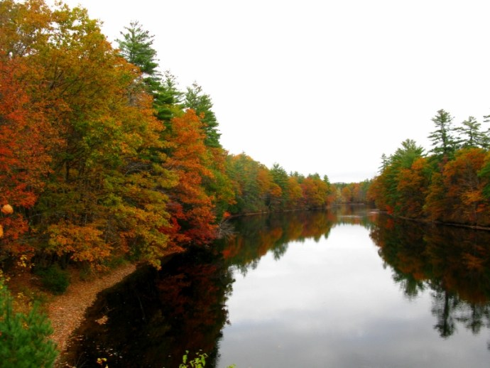 White Mountain National Forest Maine