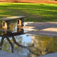 Weekly Photo Challenge: Reflections