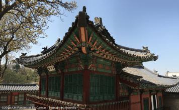 ©2019_Un_Passeport_En_Cavale_Corée_Du_Sud_Séoul_Tous_droits_réservés_1008