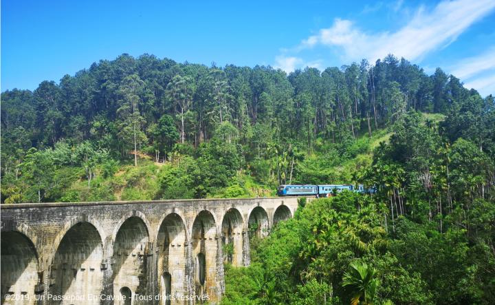 ©2019_Un_Passeport_En_Cavale_Sri_Lanka_Ella_Tous_Droits_Réservés_026