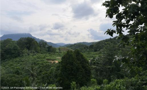 Copyright2019_Un_Passeport_En_Cavale_Sri_Lanka_Les_Rafting_Et_Canyoning_Kitulgala_Tous_Droits_Reserves_03