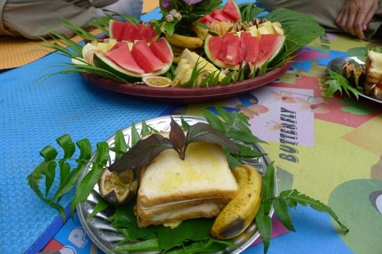 Jungle breakfast