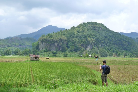 Rizières - Harau Valley