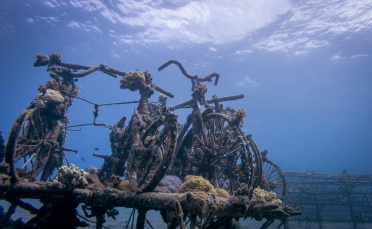 Velos immergés Pemuteran - Prise de vue en apnée
