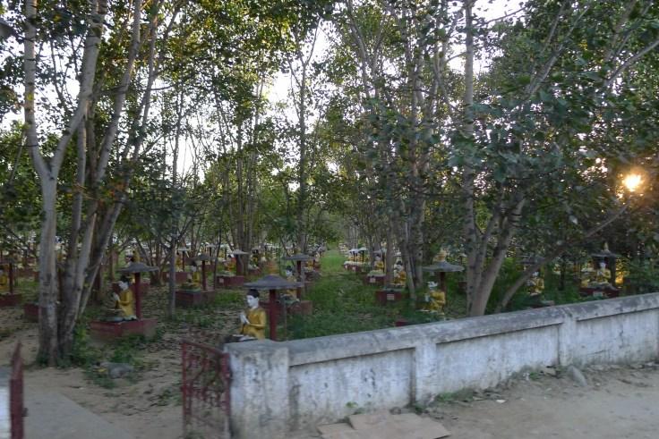 Myanmar - Monywa - Bodhi Tahtaung
