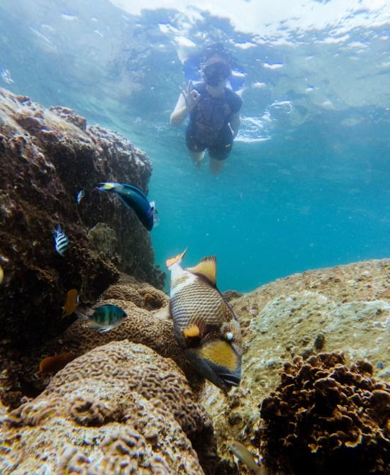 Thailande - Koh Tao - Snorkeling - Ariane and friend