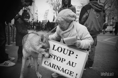Manif protection des loups
