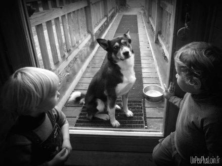 Laissez moi rentrer !