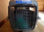 Cage de transport aérien pour chat vue frontale