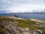 Randonnee-Hrisey-Islande