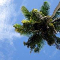 Seychelles, y a-t-il une vie après la plage?