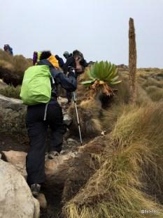 sur-la-route-des-4000-metres