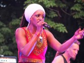 Sun Festival 2016 - Le poisson Marcel-8