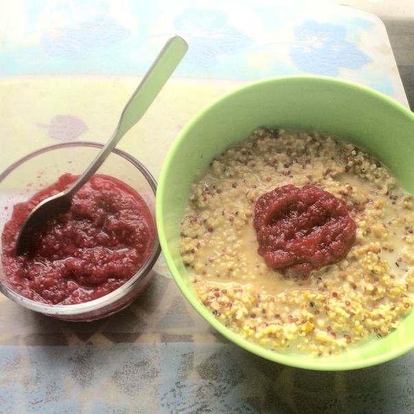 cranberry apple chia seed jam