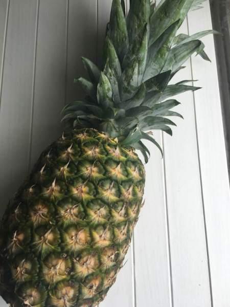 fermented pinapple skin