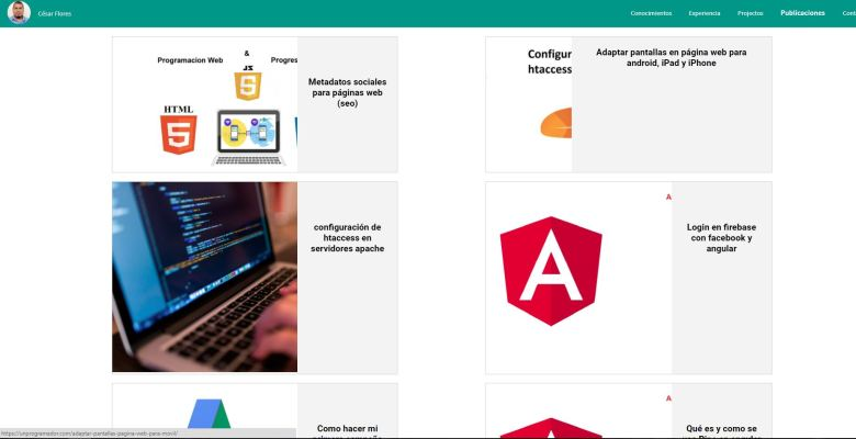 wordpress y angular