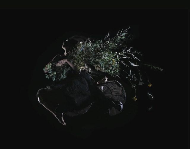 Ayla Nero, Code Of Flowers album art