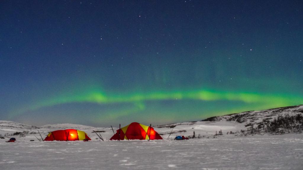 Arctic Experience in Trøndelag (Photo: Wild Norway)