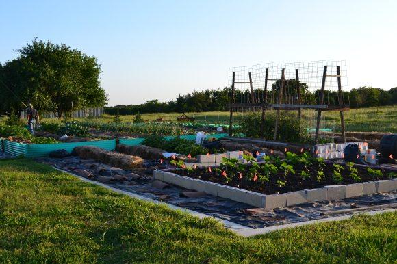 Full Garden