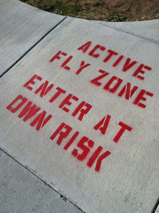 Active Fly Zone