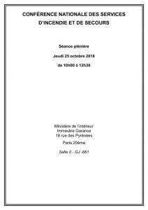 thumbnail of Dossier séance plénière CNSIS 25 octobre 2018