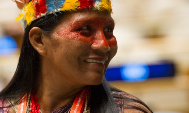 Tenth Anniversary of the United Nations Declaration on the Rights of Indigenous Peoples: measures taken to implement the Declaration