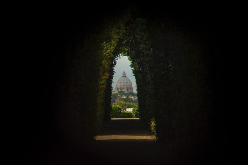 Cúpula de una catedral vista a través de un seto
