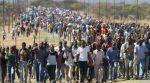 """Virenübertragende Fledermäuse: ein """"Leckerbissen"""" in Nigeria"""