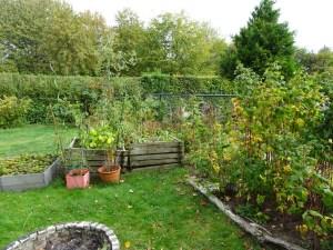 Foto Garten
