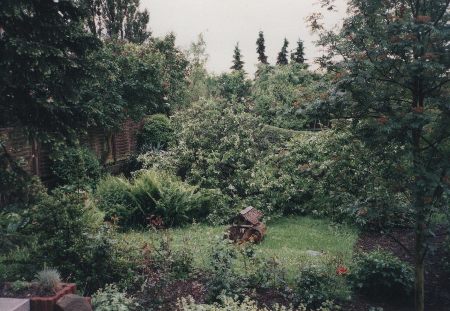 Garten der Familie Stevenz