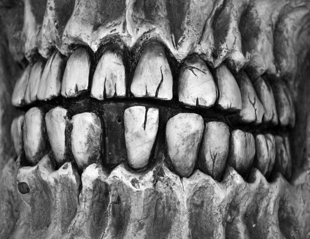 skullteeth