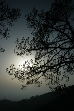 Sunset Point - Kasauli