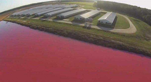 Drone Just Exposed One Of America's Biggest Environmental Issues