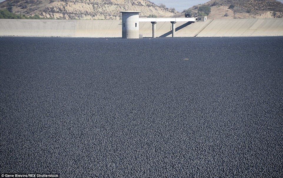 Millions of shade balls helping protect California's precious water
