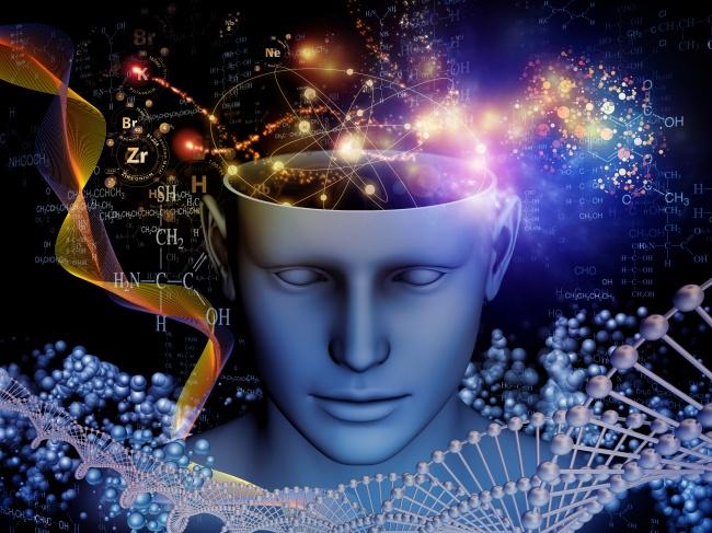 The Brain: A Secret History (2010)