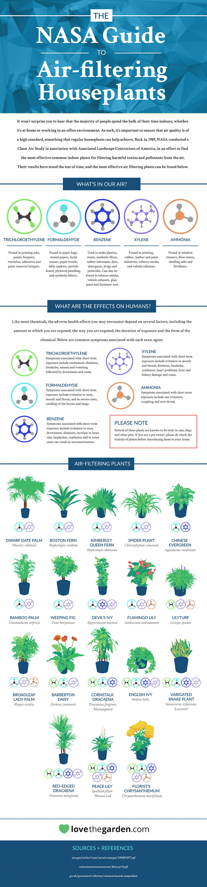 Air-Cleaning Plants