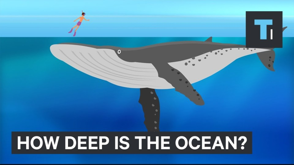 How Deep The Ocean Really Is
